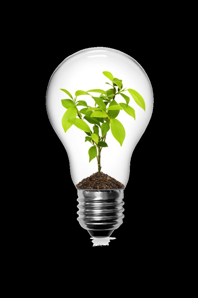 led verlichting, ecologisch, bepsparen, lichtidee, mol, gompel